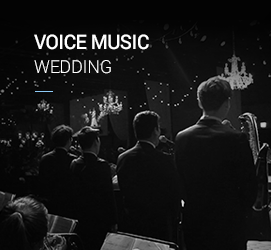 VOICE MUSIC WEDDING